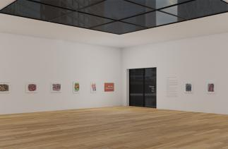 Michael Hill Virtual Exhibition still